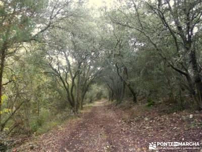 Hoces Río Riaza - Villa Ayllón; senderismo manzanares el real botas trekking madrid